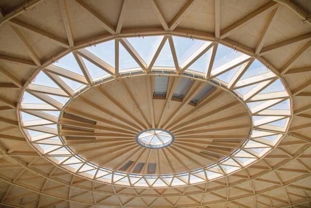 Techo de madera luminoso de La Cúpula de Arenas